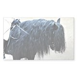 Fell Pony Rectangle Decal