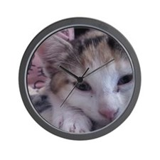 sleepy kitty clock