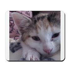 Sleepy Kitty Mousepad