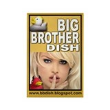 Big Brother Dish Rectangle Magnet