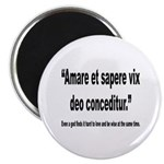 Latin Wise Love Quote Magnet