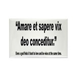 Latin Wise Love Quote Rectangle Magnet (10 pack)