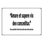 Latin Wise Love Quote Banner