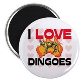 I Love Dingoes Magnet