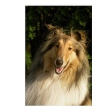 Postcards (Package of 8) (Sable)