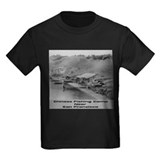 Chinese Fishing T
