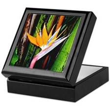 Bird of Paradise - Keepsake Box