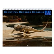 Beautiful Bearded Dragons Wall Calendar