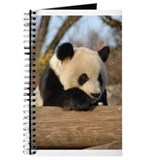 Giant Panda Journal