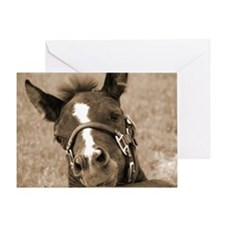 Cute Apha Greeting Card