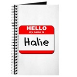 Hello my name is Halie Journal