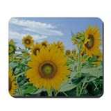 A Sunflower Mousepad