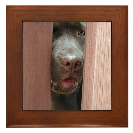 Brown Noser Framed Tile