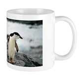 Chinstrap Penguin Small Mug
