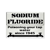 Sodium Fluoride Rectangle Magnet (10 pack)