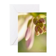 Cluster of Promises Greeting Card