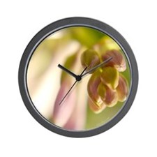 Cluster of Promises Wall Clock