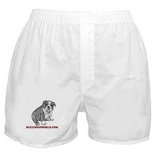 Red Logo Boxer Shorts