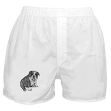 Puppy Drawing Boxer Shorts
