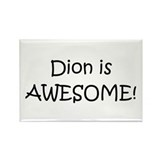 Dion Rectangle Magnet (100 pack)