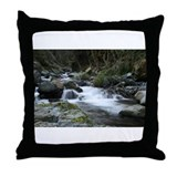 Sylvia shiell bfa Throw Pillow