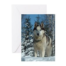 MCK Racing Siberians Greeting Cards (Pk of 20)