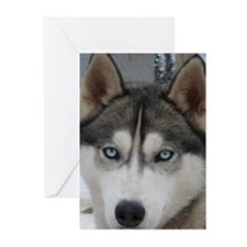 MCK Racing Siberians Greeting Cards (Pk of 10)