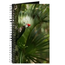 Woodpecker Journal