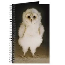 Wesley The Owl 5x7 Journal