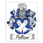 Pellicani Family Crest Small Poster