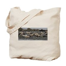 Harbor Seals Tote Bag