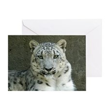 Snow Leopard M002 Greeting Card