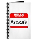 Hello my name is Araceli Journal