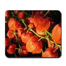 Cute Chinese lantern Mousepad