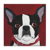 Boston terrier Drink Coasters