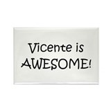 Vicente's Rectangle Magnet (100 pack)