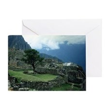 Machu Picchu Tree Greeting Card