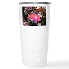 Pink and purple fish Ceramic Travel Mug