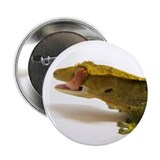 "Crested Gecko eye lick 2.25"" Button"