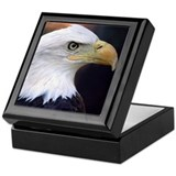 American Bald Eagle - Keepsake Box