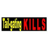 Safe Driving Bumper Sticker (10 pk)