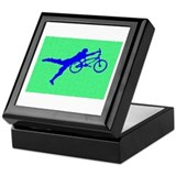 PAINTED GREEN BLUE BMX Keepsake Box
