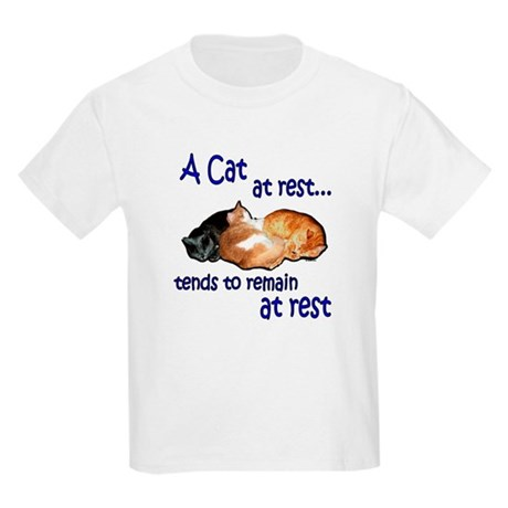 (Kids) Laws of Physics Cats Kids T-Shirt