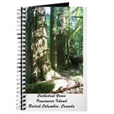 Cathedral Grove 28 Journal