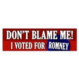 I voted for Romney Bumper Sticker (10 pk)