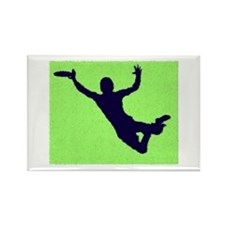 PAINTED GREEN BLUE DISC CATCH Rectangle Magnet (10
