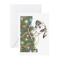 Holiday Nmq Greeting Card
