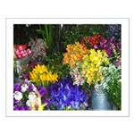 california open air flower market small poster