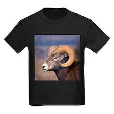 Unique Mammals T