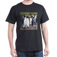 King Penguin 123007 - 037 T-Shirt